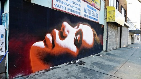 a beatuful street art piece found in chelsea, NYC