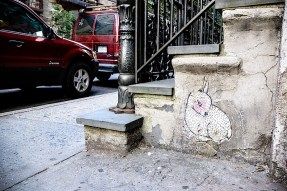 abel_macias_bunny_in_the_east_village.jpg