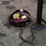 Hipster Trap – In New York, USA