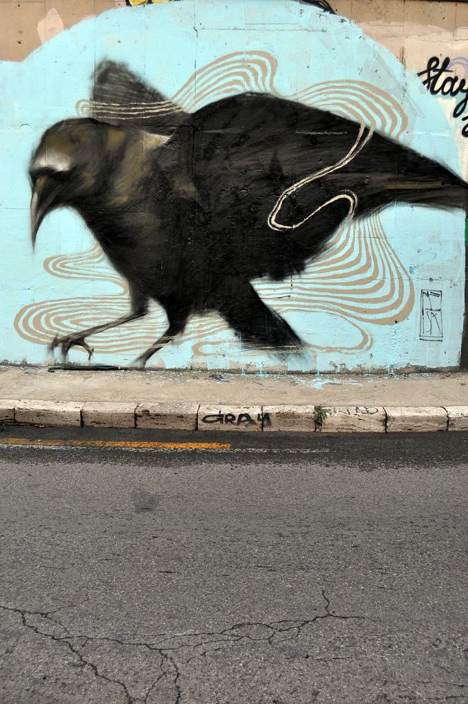 Ravens by Mesa 6