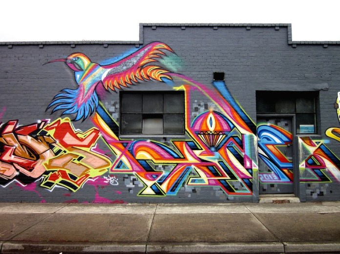 Bird of rainbow – In Melbourne, Australia
