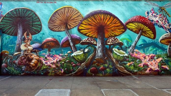By GORE, SKE, PER, FX, LOADS and 20M – In Bronx, New York, USA