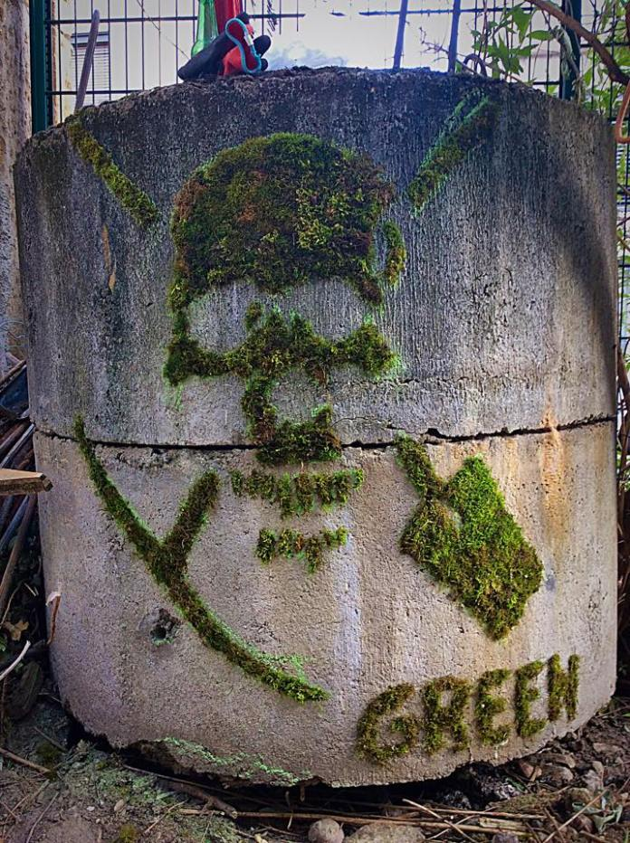 Moss Graffiti by GREEN in Lyon, France 2