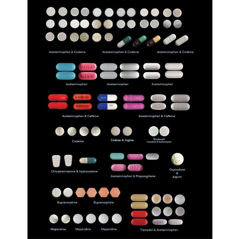 Drug Identification Guide (2017)