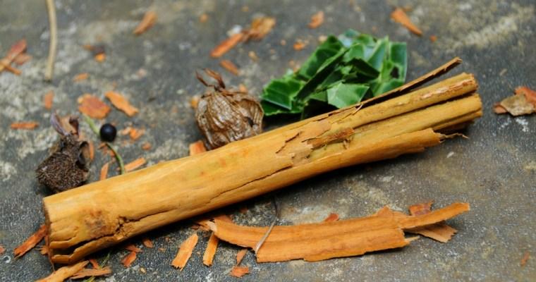 Spice Garden. Srí Lanka a jej koreninová záhrada