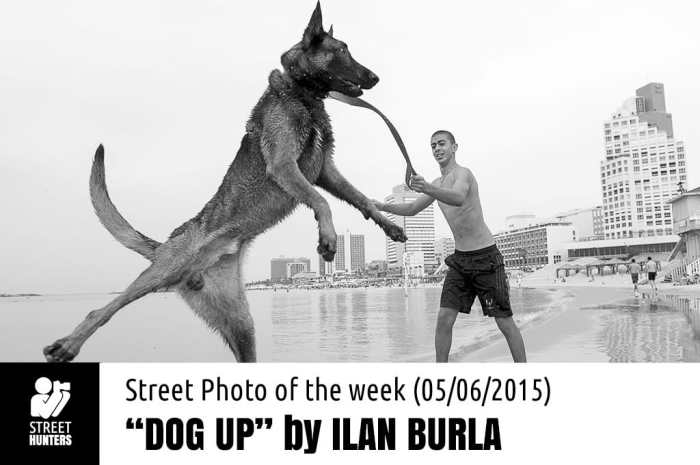 Street Photo of the week - Dog Up by Ilan Burla