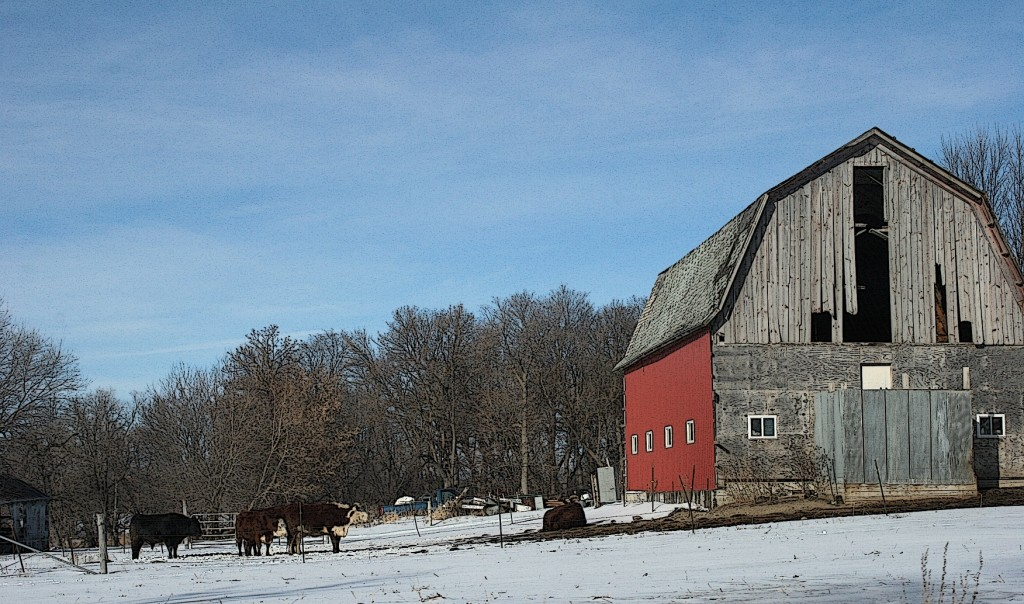 This scene elicits memories of laboring on my childhood farm in southwestern Minnesota.