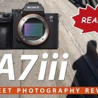 Sony A7iii Street Photography Review - Does It Live Up To The Hype?