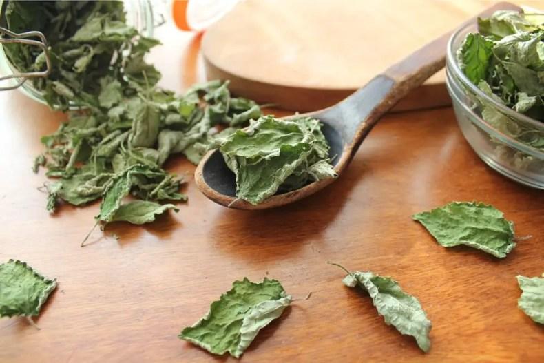 Air-dried mint leaves