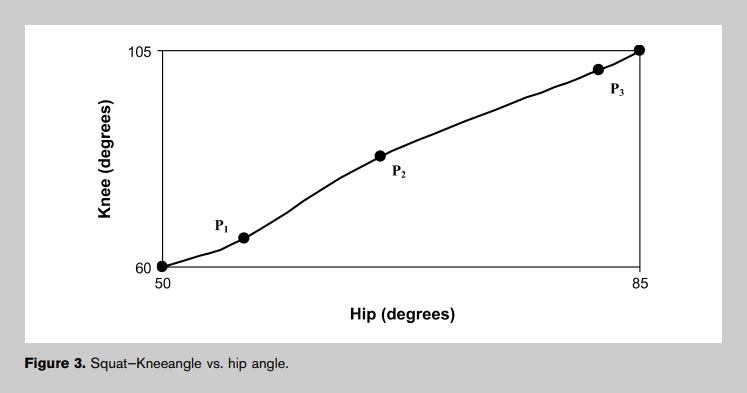 Ratio of hip and knee extension in the squat