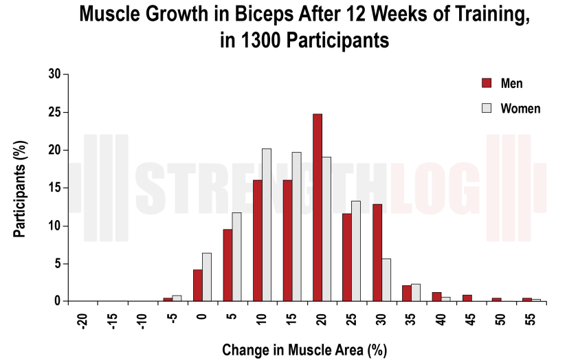 Muscle growth in biceps