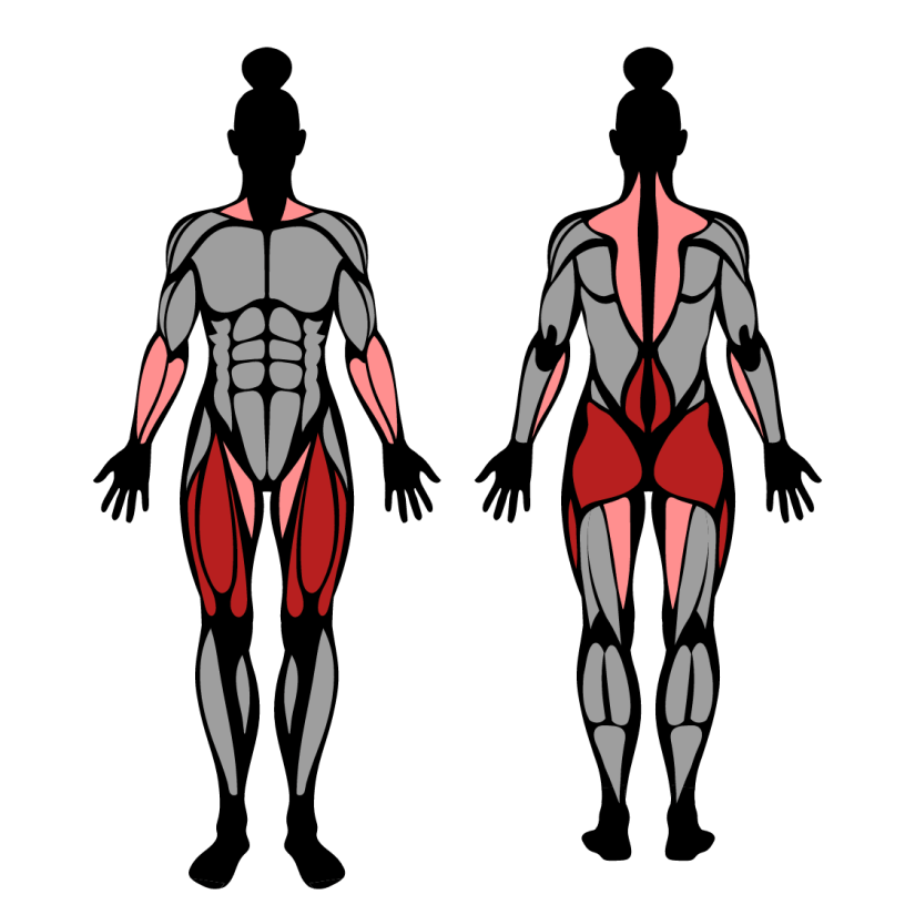 Muscles worked by trap bar deadlifts