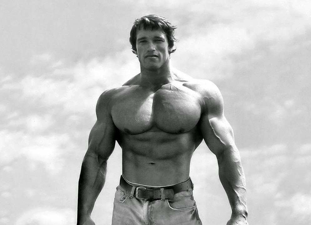 Arnold Schwarzenegger Chest Muscles