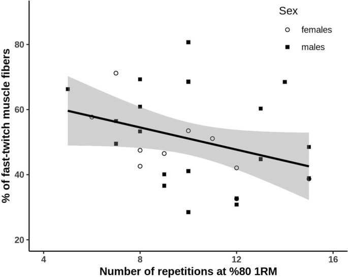 Repetitions at 80% of 1RM and muscle fiber type