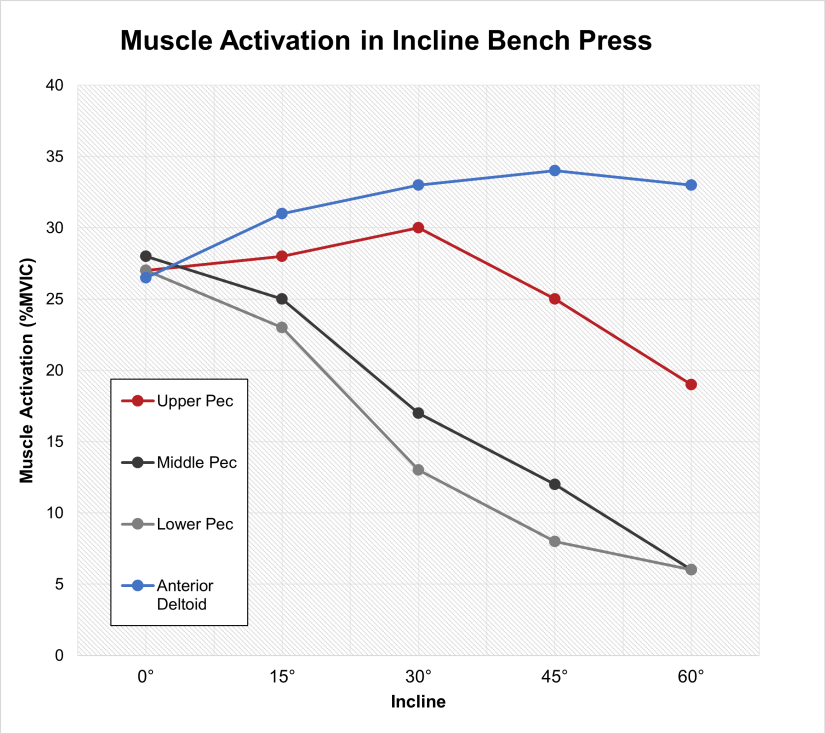 Front delt activation in incline bench