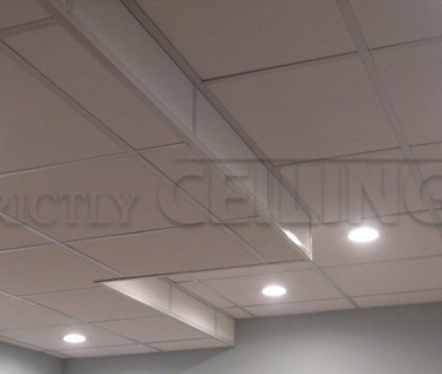 Residential Ceiling Installation