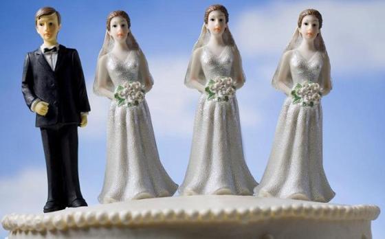 Polygamy cake