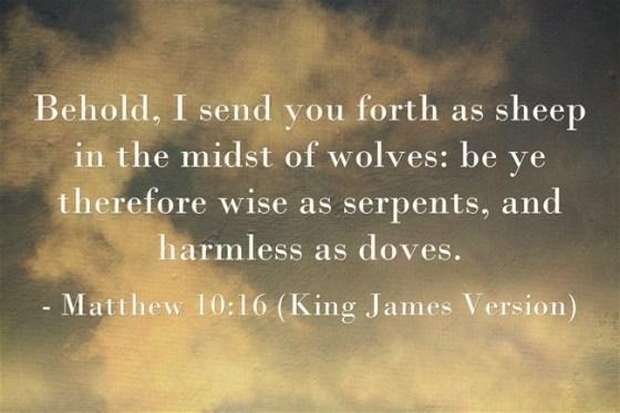 Matthew-10-16