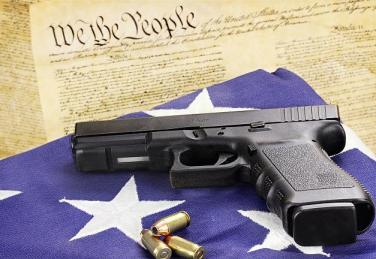 Gun - Constitution - Flag