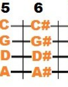 Bass guitar notes chart also mastering the fretboard simplified stringvibe rh