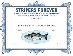 Stripers4EVERreleaseCertFINAL4x8FLAT
