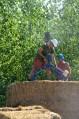 STEP-3-Lasttragender-Strohballenbau-Workshop-239