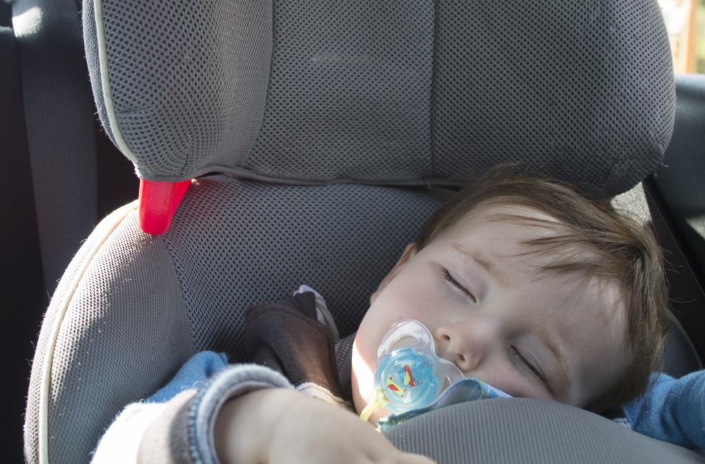 Fletcher sleeping in car