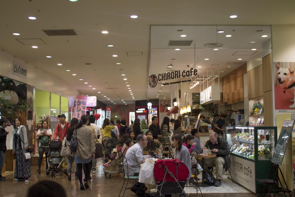 Dog friendly cafe Odaiba Japan
