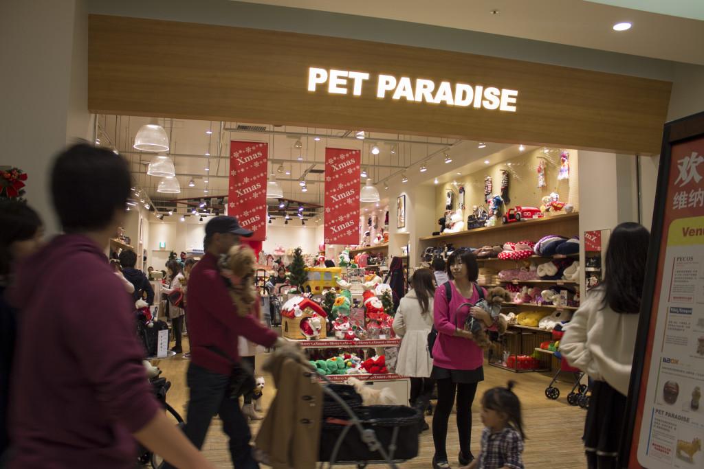 pet paradise odaiba