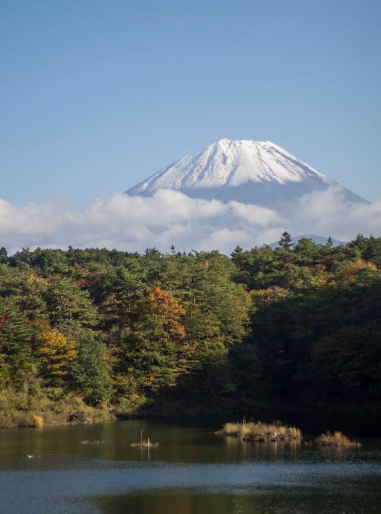 Mt. Fuji and Lake Shoji