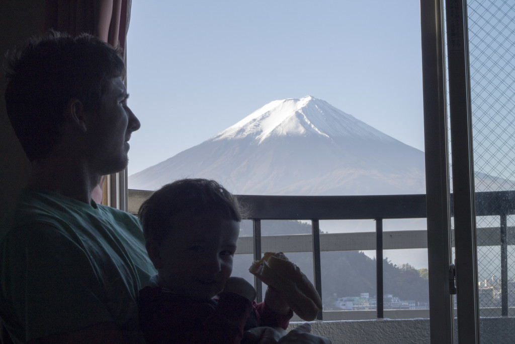 Mount Fuji Views
