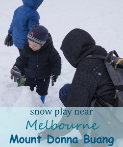 snow play mount donna Buang