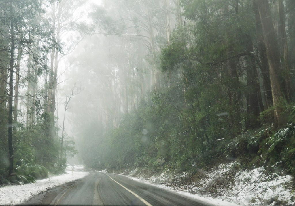 Mount Donna Buang Road