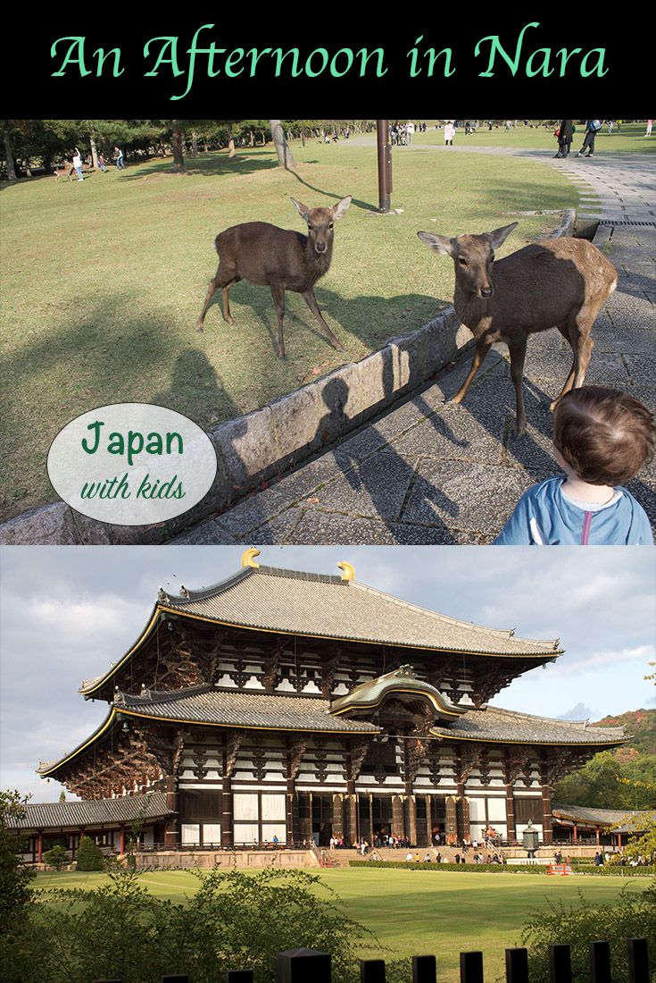 an afternoon in Nara
