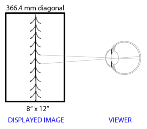 Equivalence Sharpness - Displayed Image