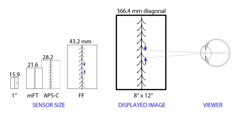 Equivalence Sharpness - Displayed Image2