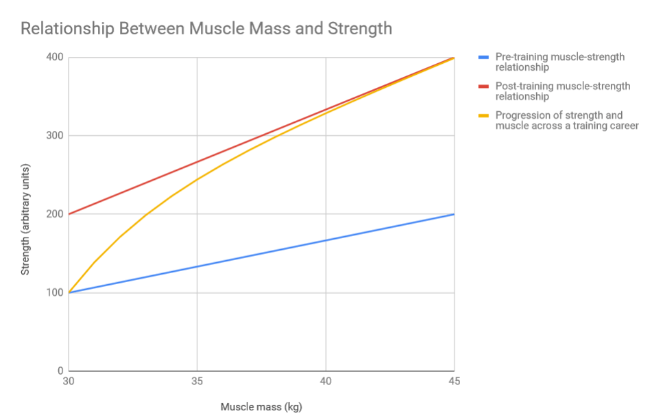 Size vs  Strength: How Important is Muscle Growth For Strength Gains