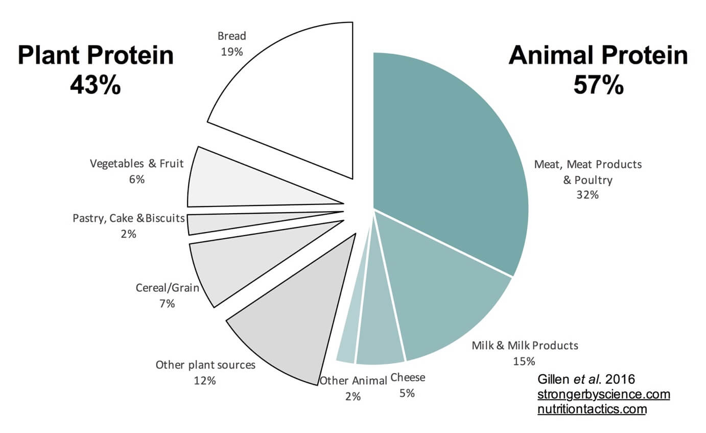 protein intake type and source