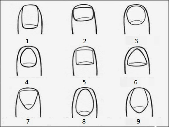 This Incredible Test Shows What The Shape of Your Nail