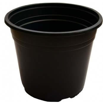 Ghiveci VCD negru(15 cm)
