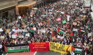 Palestine solidarity groups condemn anti-Palestinian hate and reject conflation of Palestinian rights with anti-Semitism