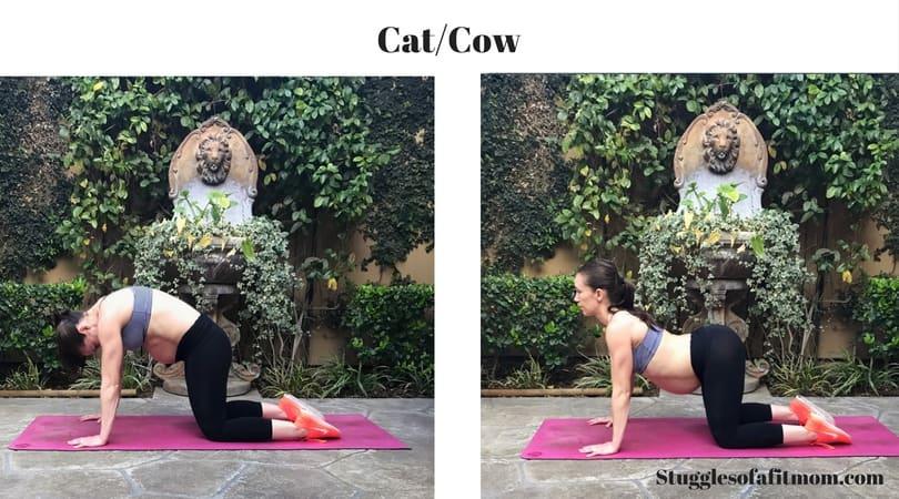 Pregnancy ab exercises