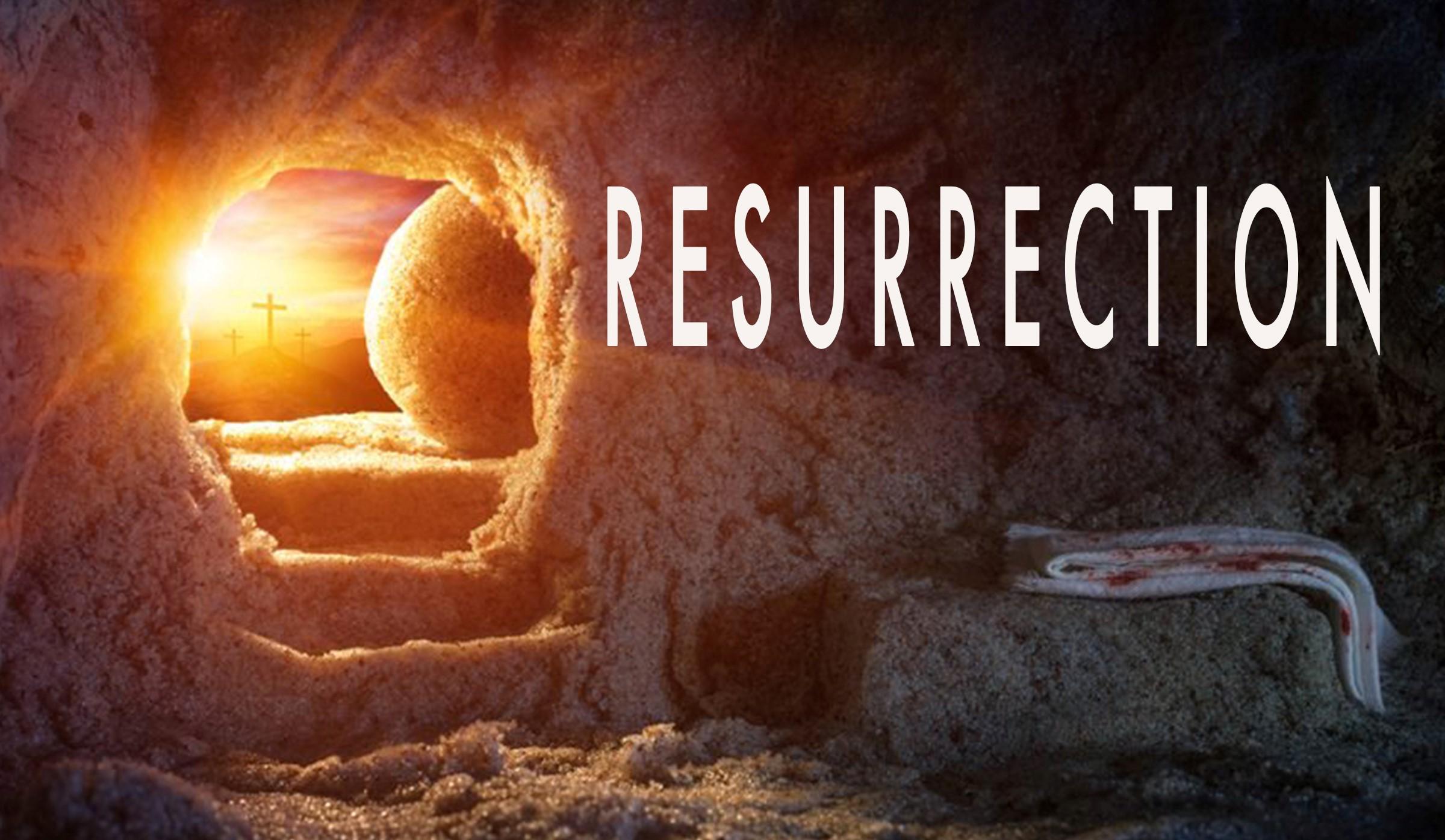 Resurrection Category - St Shenouda Press