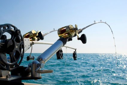 st thomas fishing charter