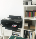 new printer 2019 Epson Surecolor P800