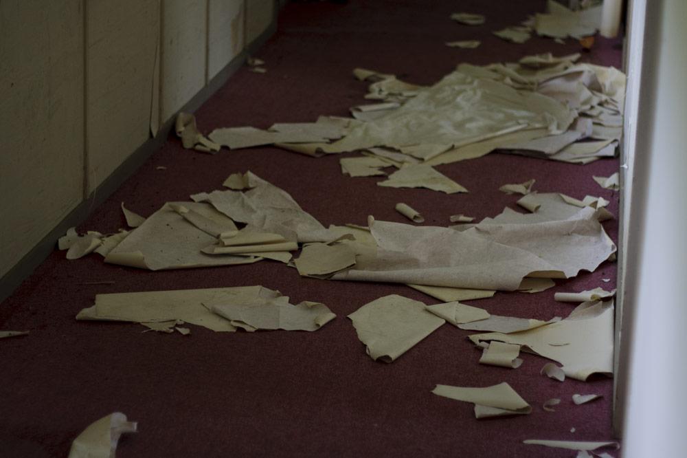 Mori no hotel (Stuart Munro)