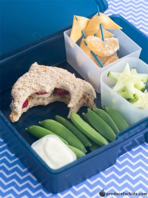 Picture of lunch in a bento box