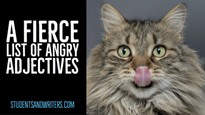 Read more about the article A fierce list of angry adjectives