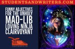 Funny Adjectives for the unholy mad-lib loving Ninja clairvoyant