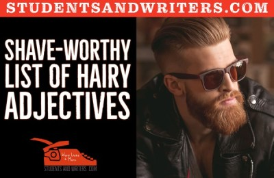 Read more about the article Shave-worthy list of hairy Adjectives